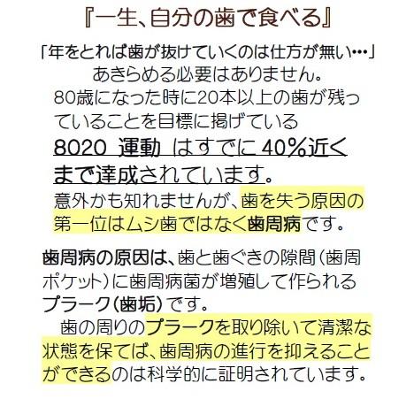 newsletter_1st